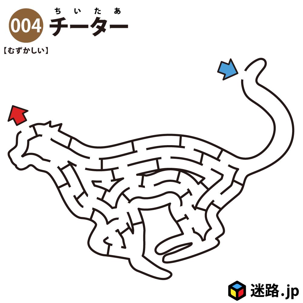 【迷路】チーター(難しい)