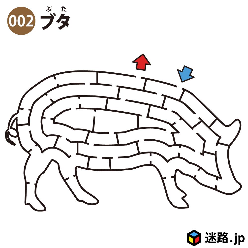 【迷路】ブタ
