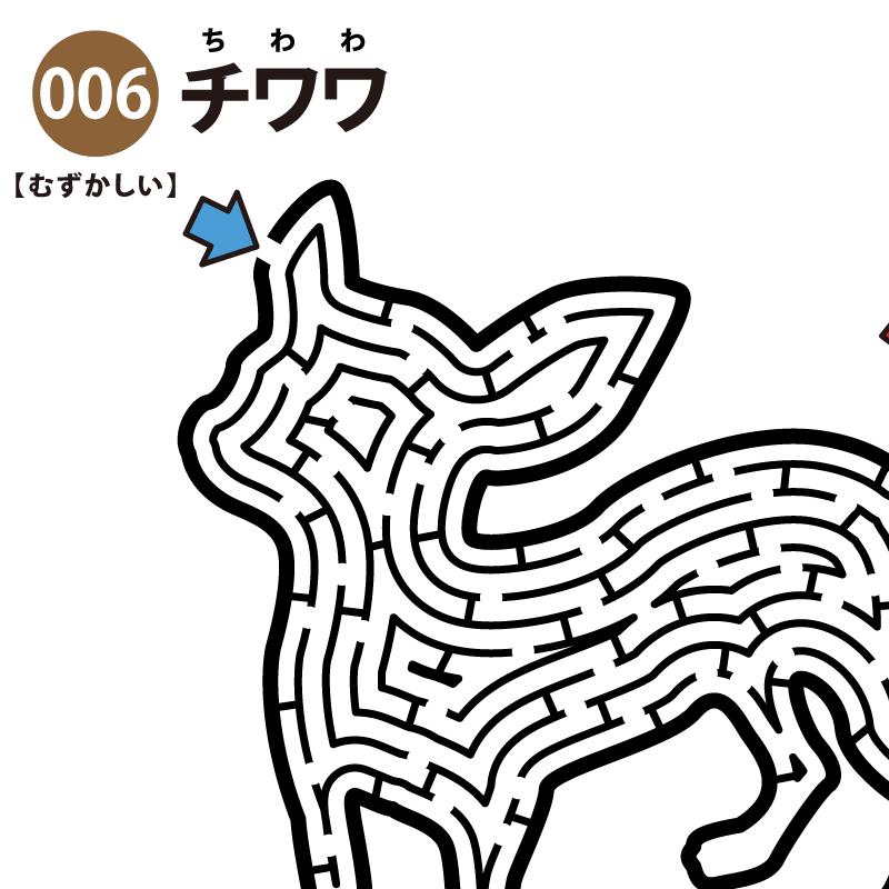 【迷路】チワワ(難しい) アイキャッチ