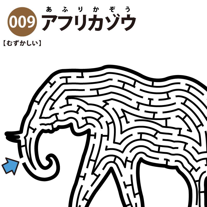 【迷路】アフリカゾウ(難しい) アイキャッチ