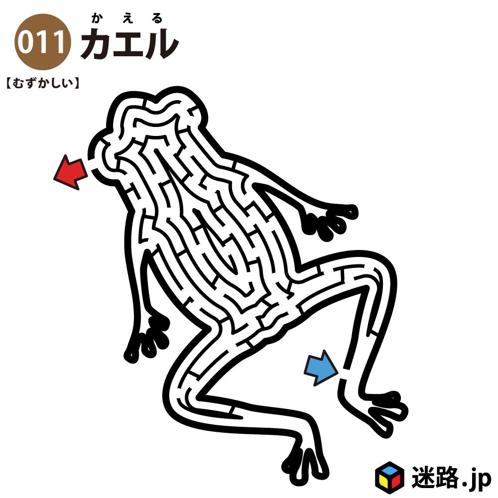 【迷路】カエル(難しい)
