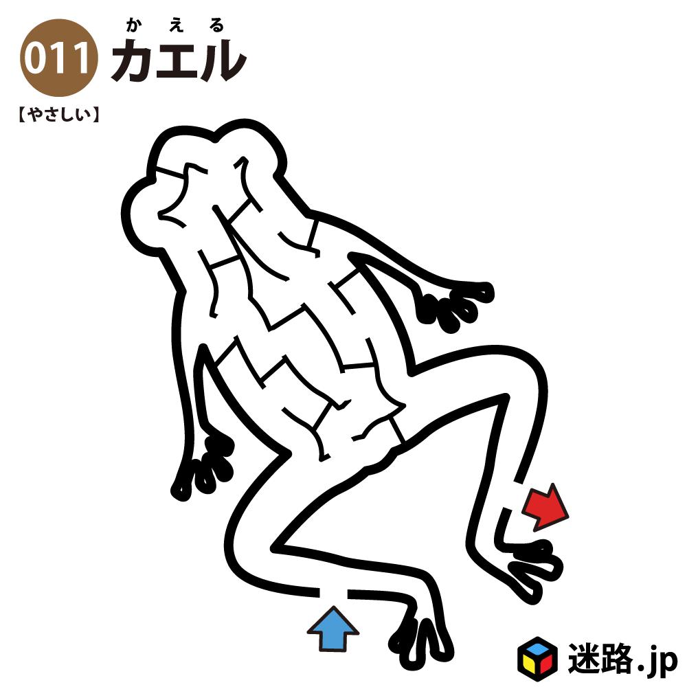【迷路】カエル(易しい)