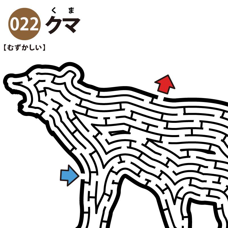 【迷路】クマ(難しい)アイキャッチ