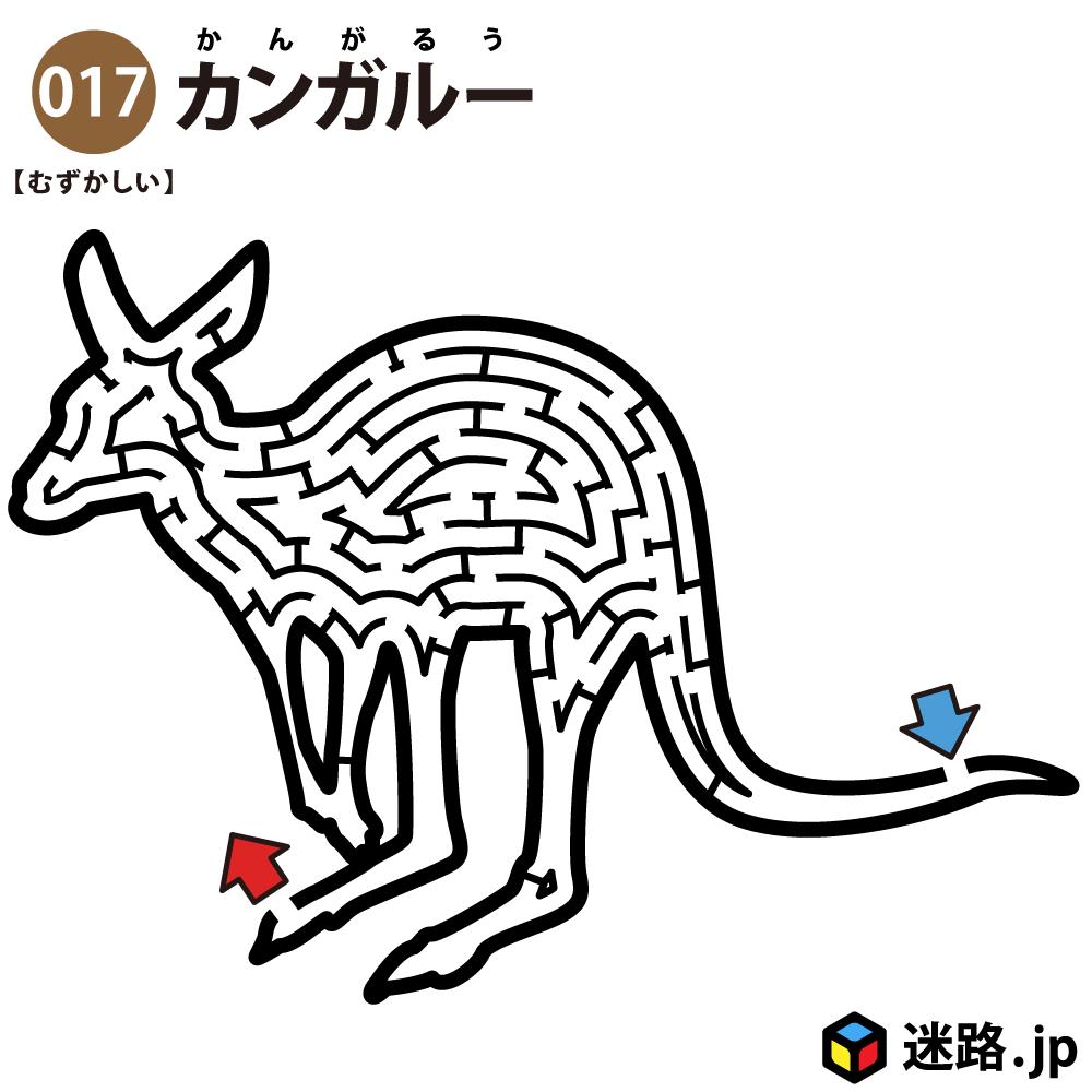 【迷路】カンガルー(難しい)