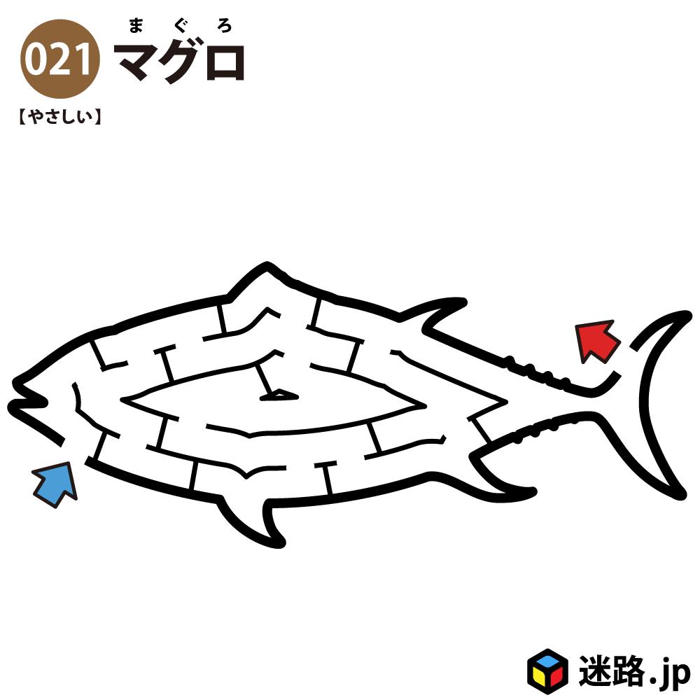【迷路】マグロ(易しい)