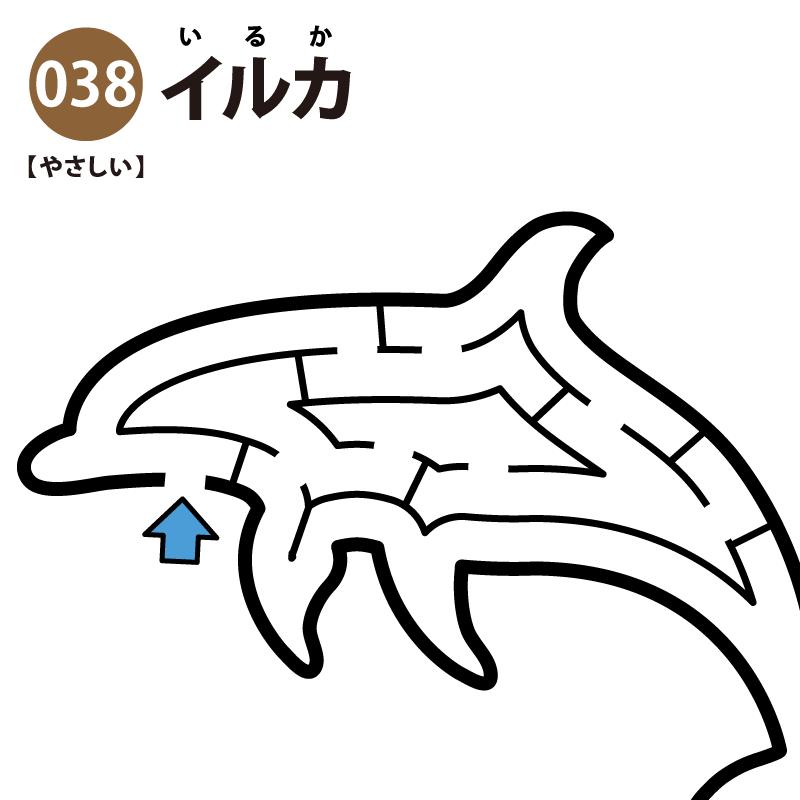 イルカの簡単迷路 アイキャッチ