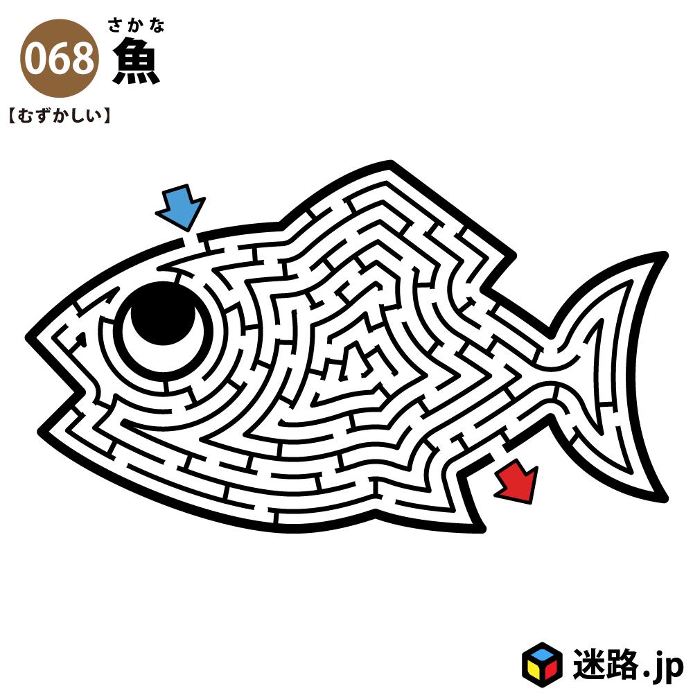 魚の難しい迷路