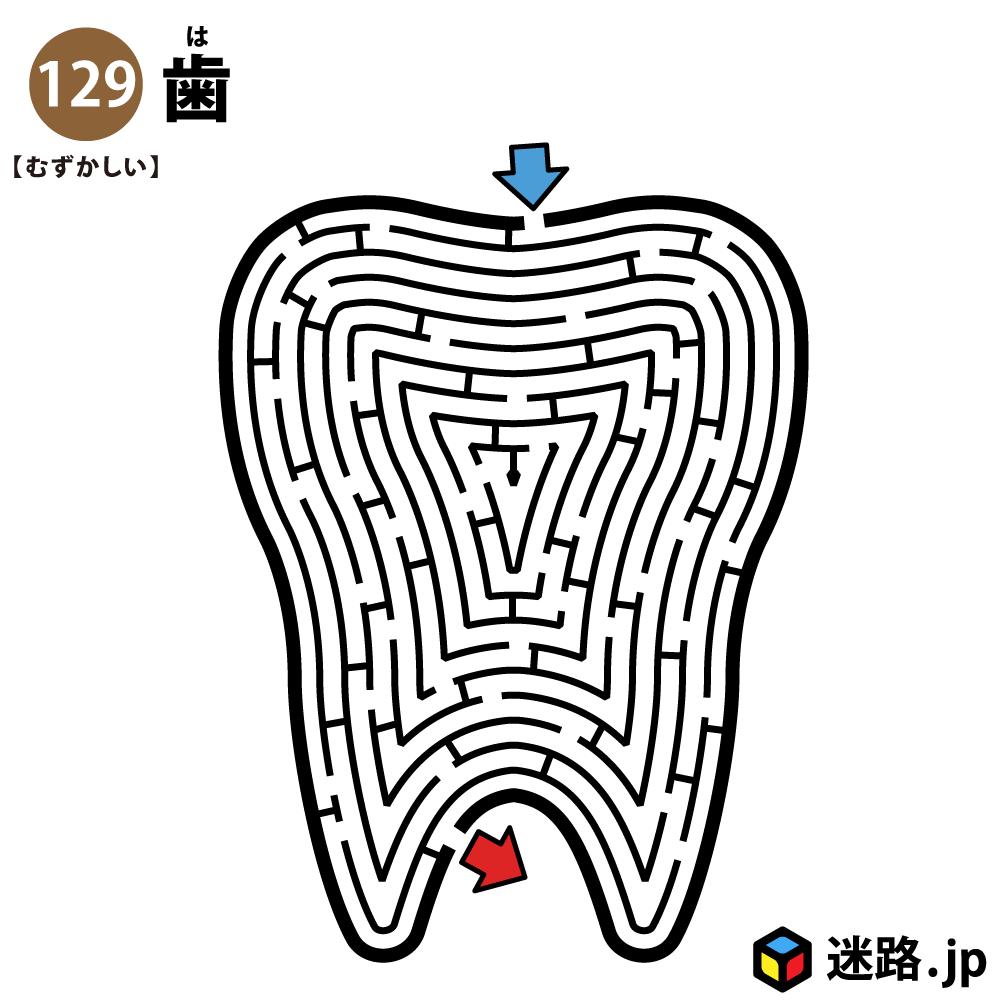 歯の難しい迷路
